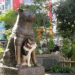 海外「渋谷のハチ公を見ると涙があふれてくる」世界一有名な秋田犬に外国人感動