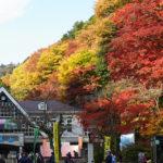 海外「高尾山の紅葉がAMAZING!!」→フレンドリーな日本の登山者に外国人感動