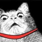 """【炎上】大阪の安宿でマレーシア人の学生が""""人糞テロ""""、マレーシアのネット民大激怒!"""