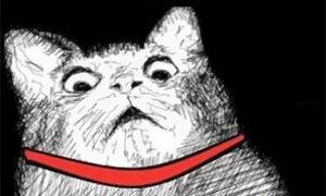 海外「ボス戦みたいだ」ドーベルマンと子猫の可愛すぎる喧嘩に外国人ほっこりの嵐!