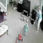 海外「これは大惨事!」猫の勘違い?ベビーシッターが猫から逆襲される動画に外国人から驚きの声!