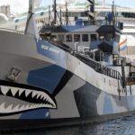 反捕鯨「シーシェパードが日本の捕鯨船への妨害を中止!?」海外から賛否両論の声!