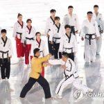 韓国「北朝鮮がバチカンでの南北合同テコンドー公演の不参加を表明!」袋叩きだ!の声